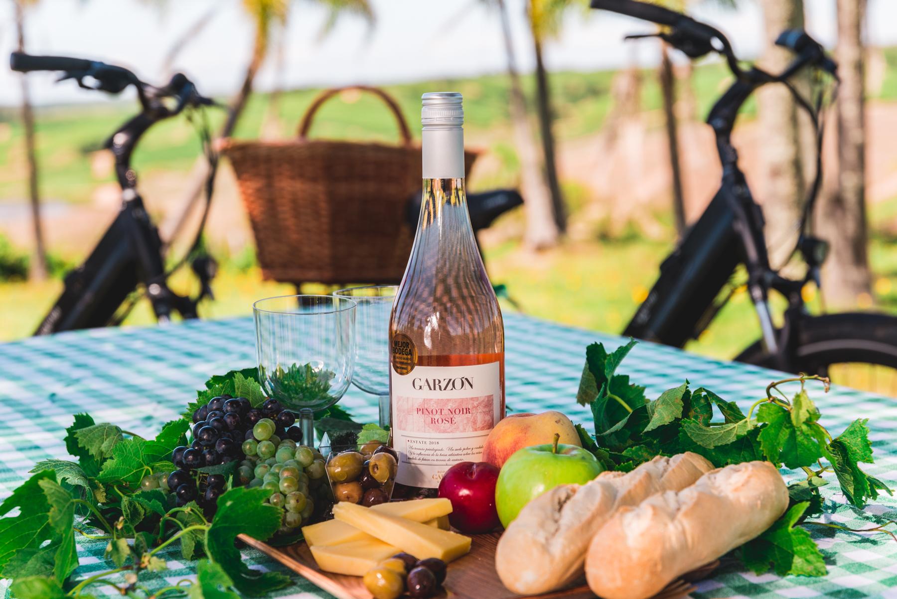 Pícnic entre los viñedos