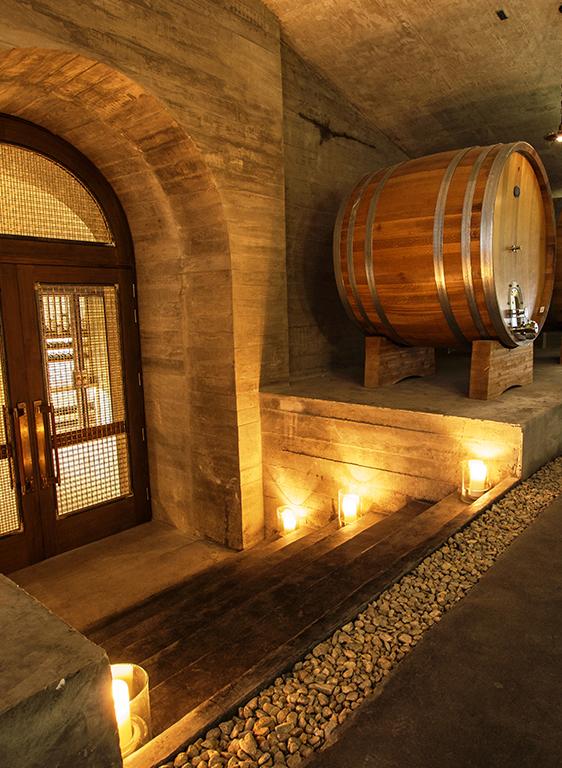 Descubra los rincones secretos de la bodega y el viñedo mientras degusta nuestros vinos más icónicos