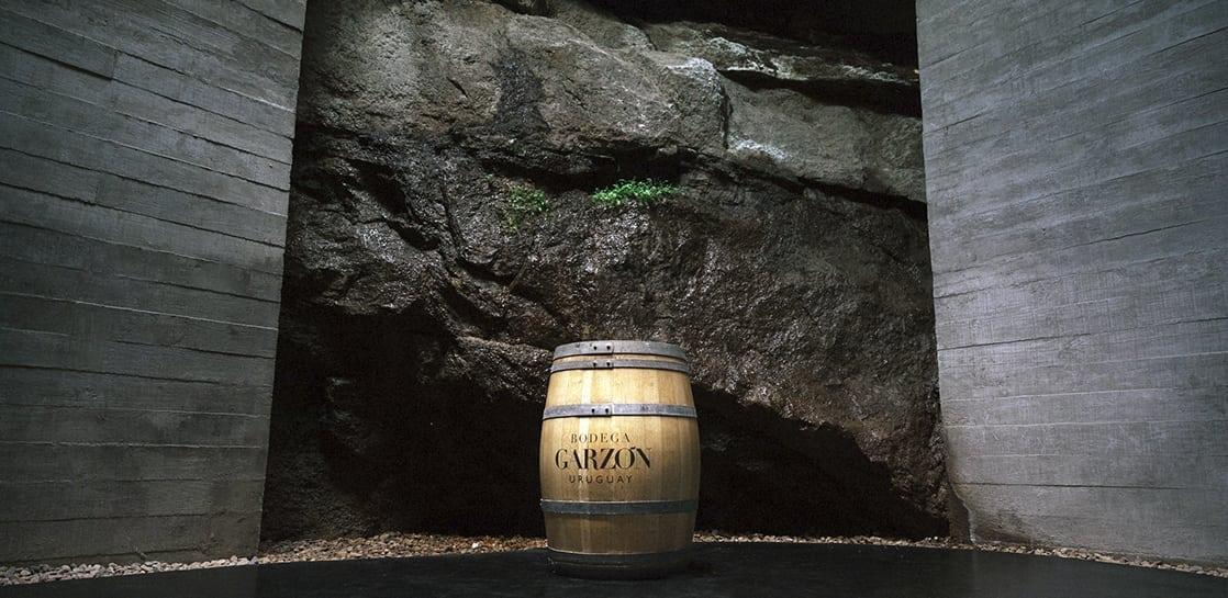 Tour Garzón Single Vineyard